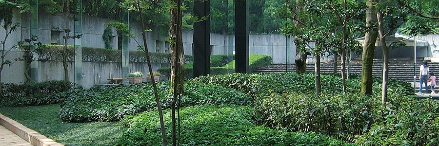 センター 緑化